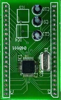 LPC210x ARMee Development System (040444-91)